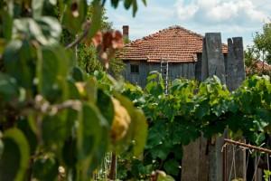 село Българи
